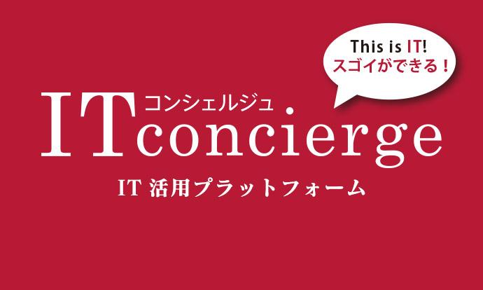 ITconcierge